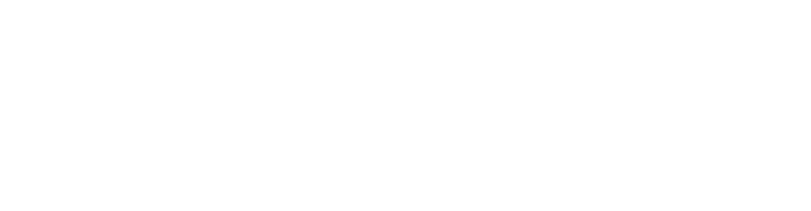this is an image of the rragentsacademy.com logo